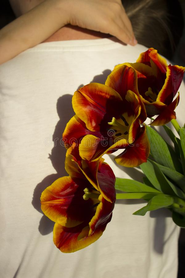 A man in white clothes standing back and a girl hugging the neck of a man holding in his right hand red with a yellow border. Tulips directed to the right royalty free stock photos