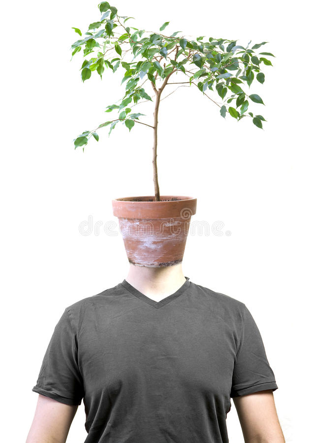 Free Man With Ficus Head Stock Photography - 15306572
