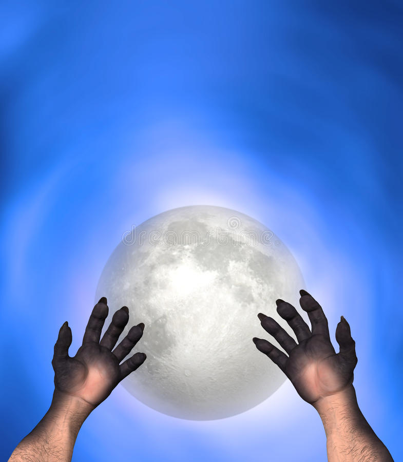 Man Wolf Werewolf Perspective Hands Illustration royalty free stock photography
