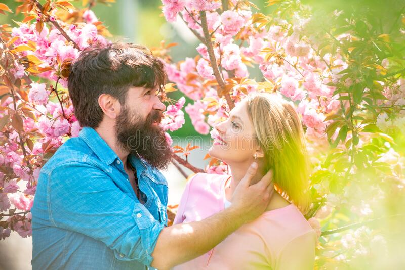 Man and woman in blooming garden. Portrait of young couple smiling on spring blossom background. Couple near sakura tree royalty free stock photography