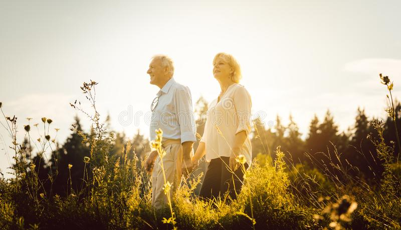 Man and woman, both seniors, embracing each other. On a meadow royalty free stock photo
