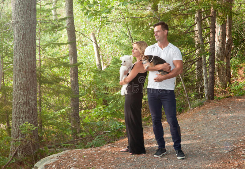 Man and woman with dogs watching forest stock images
