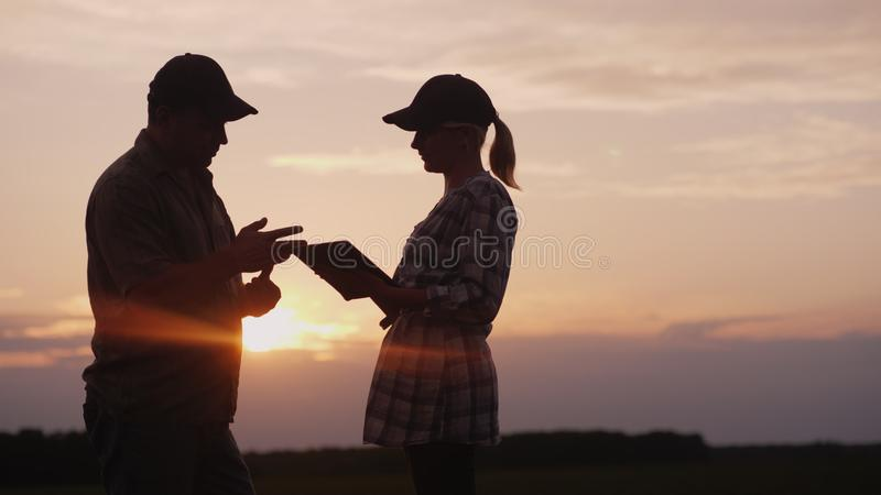 Man and woman farmers communicate with each other. In the evening at sunset they stand in the field royalty free stock image