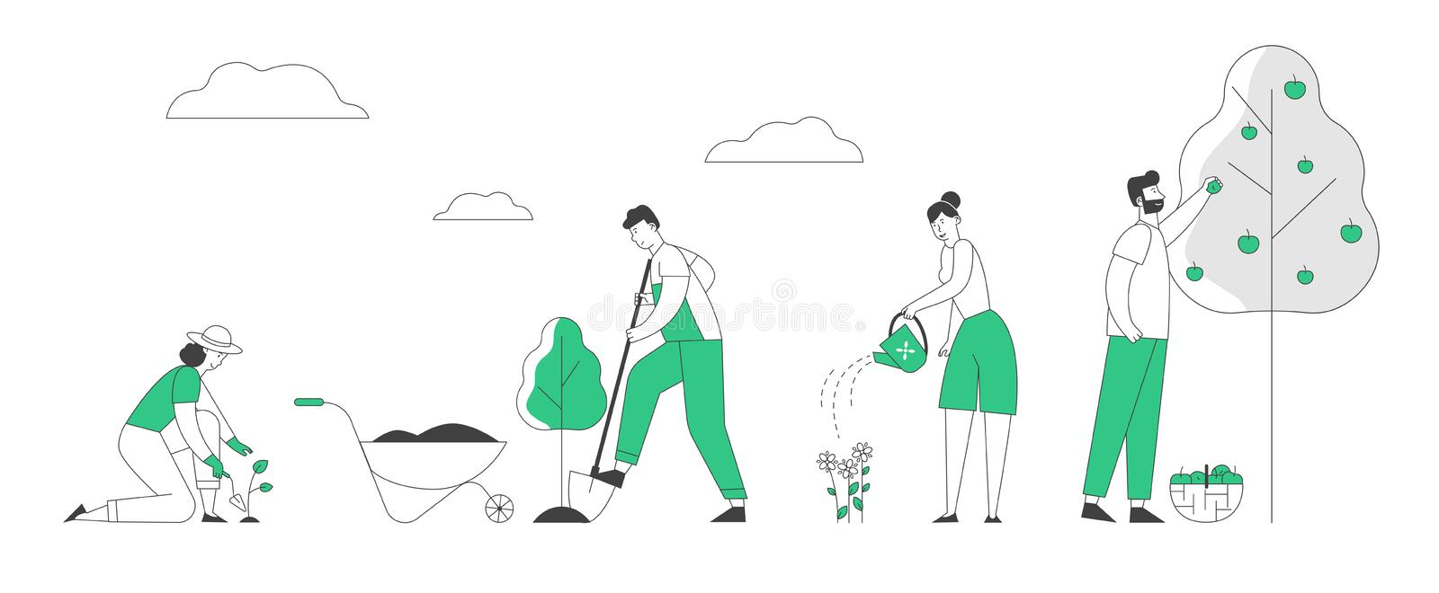 Man and Woman Farmers or Gardeners Planting and Caring of Tree Sprout and Pick Apple Harvest. Happy Couple Characters Harvesting Ripe Fruits in Summer Garden vector illustration