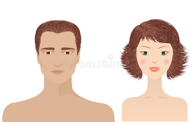 Download Man And Woman Portraits  Isolated For Design Stock Vector - Illustration of head, attractive: 22800423