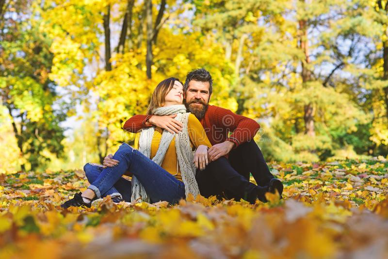 Man and woman with romantic faces on autumn trees background stock images