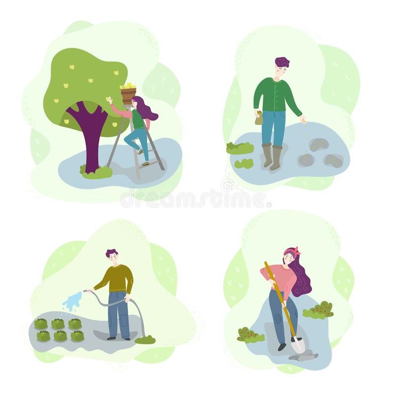 Man and woman in rural. Water the vegetables, sow, dig the ground, collect fruit. Season agriculture harvest work scene set. stock illustration