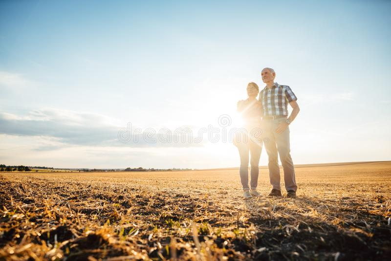 Man and woman, a senior couple, embracing each other stock photography