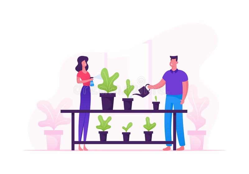 Man and Woman Spraying and Water Flowers on Shelf with Watering Can. Happy Romantic Couple Take Care of Home Plants royalty free illustration