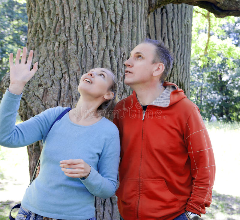 The man and the woman standing at a trunk of a huge tree, an oak show aside. The men and the women standing at a trunk of a huge tree, an oak show aside stock photos