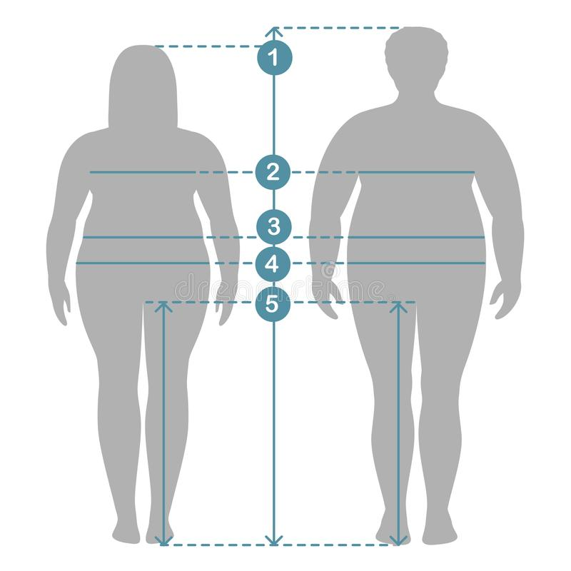 Man and women clothes plus size measurements. Human body measurements and proportions. stock illustration