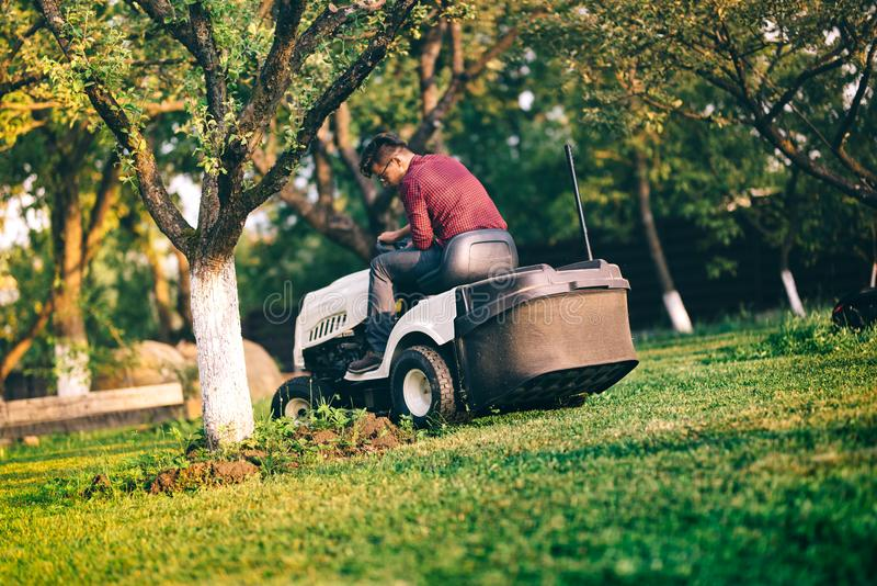 Man worker carefully trimming lawn. Grass cutter occupation in industrial field. Male worker carefully trimming lawn. Grass cutter occupation in industrial field royalty free stock image