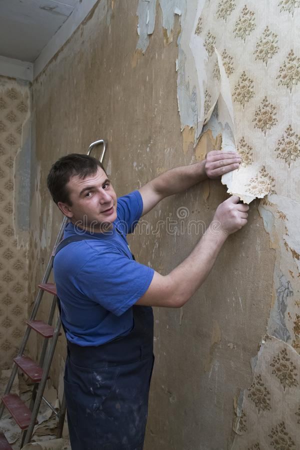 Man worker removing old wallpaper during overhaul stock photo