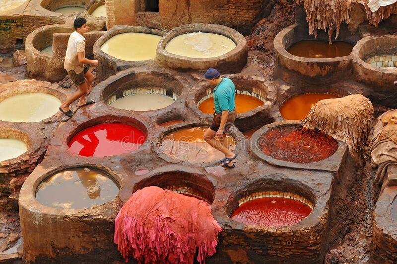 Man working as a tanner in the dye pots at leather tanneries viewed from from the Terrace de Tanneurs in the ancient Fez medina, royalty free stock photo