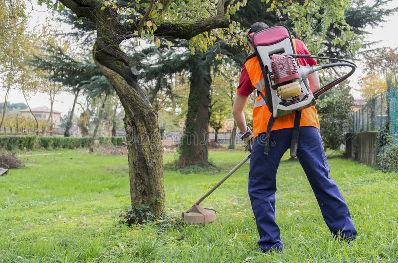 Man working edge trimmer. Man wearing ear protectors mowing grass in the backyard with petrol hedge trimmer royalty free stock image