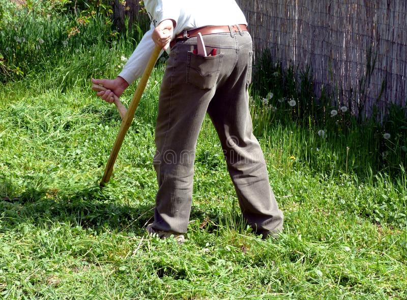 man working on green field scything tall grass in spring royalty free stock image