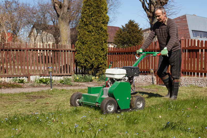 Man working with Lawn Aerator. Lawn Aerator.A lawn aerator is a garden tool or machine designed to aerate the soil in which lawn grasses grow stock photo