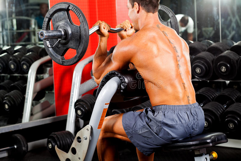 Download Man working out stock image. Image of bodybuilder, exercise - 24727697