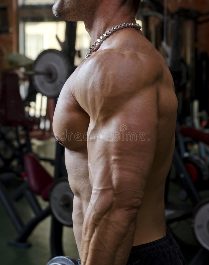 Man working out at the gym. Chest, pecs, arm stock photos