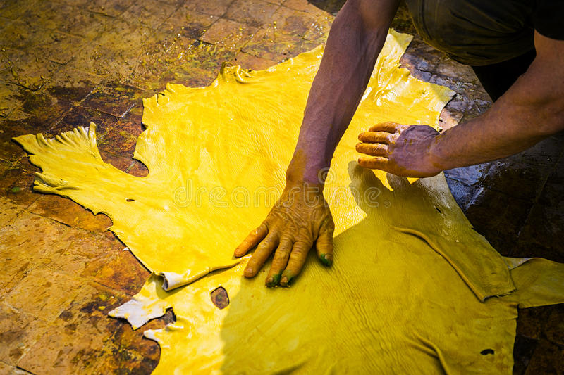 Man working in a tannery. In the city of Fez in Morocco royalty free stock image
