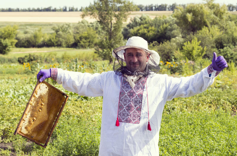 A man works in an apiary. Collecting bee honey stock image