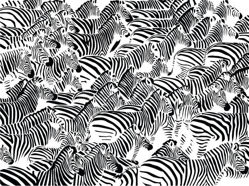 Manada de cebras libre illustration
