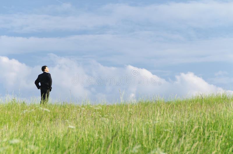 Manager On The Meadow Stock Photography
