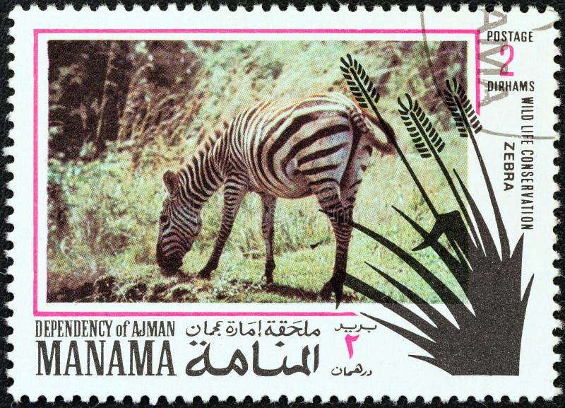 MANAMA-ABHÄNGIGKEIT - CIRCA 1971: Ein Stempel, der in Arabische Emirate gedruckt wird, zeigt ein Zebra, circa 1971 stockfotos