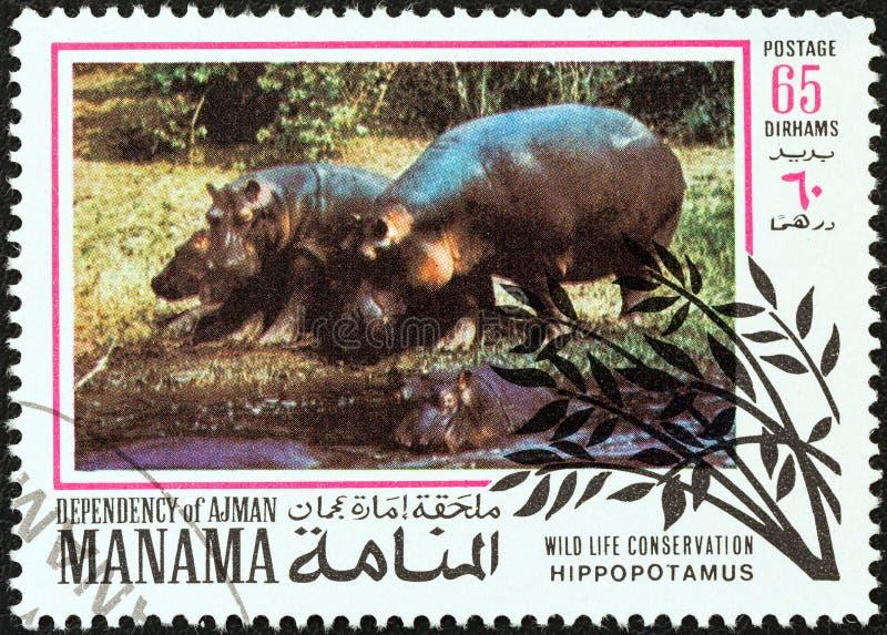 MANAMA-ABHÄNGIGKEIT - CIRCA 1971: Ein Stempel gedruckt in Arabische Emirate-Shows Nilpferd, circa 1971 stockbild