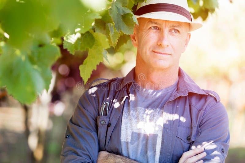 Mananseende i vingård royaltyfri fotografi