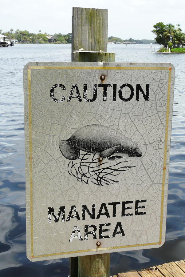 Manatee Caution Sign Royalty Free Stock Image