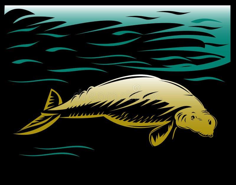 Manatee o dugong illustrazione di stock