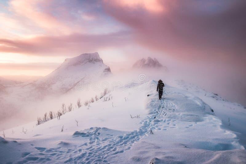 Manbergsbestigare som går med snöfotspår på snömaximumkant I royaltyfri bild