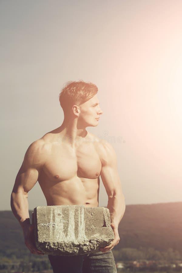 Manbyggmästare med den muskulösa kroppen arkivbilder