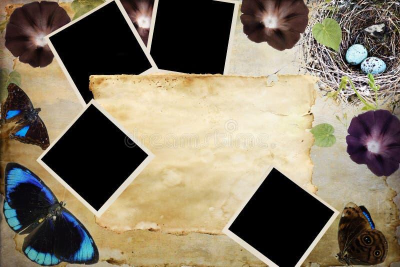 Manchado fotos de papel y en blanco fotos de archivo libres de regalías