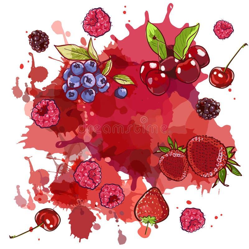 Manchas de la acuarela y bayas salvajes cereza, fresa y frambuesa, arándano, zarzamora en el fondo blanco salpica ilustración del vector