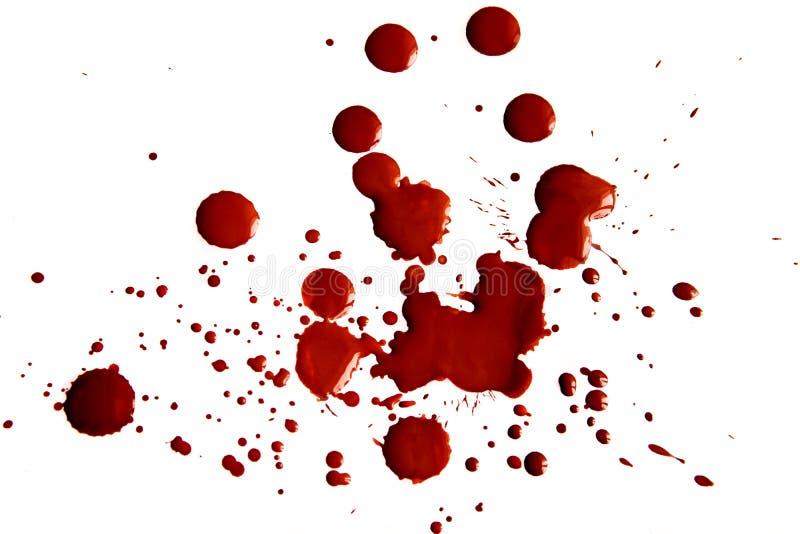 Manchas de sangue fotografia de stock royalty free