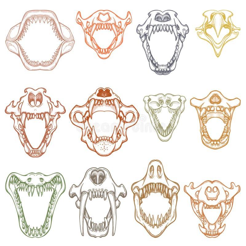 Mandíbula huesudo abierto del vector de la boca de los animales con los dientes o los colmillos del tiburón enojado de los animal ilustración del vector