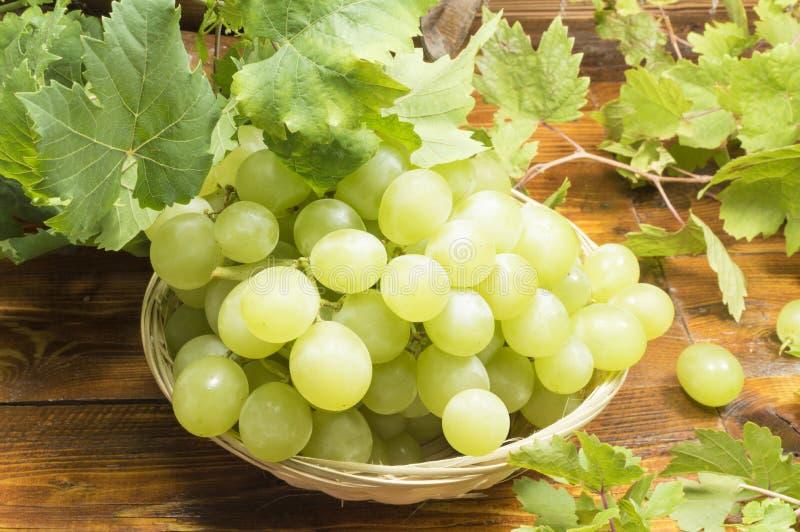 Mand met druiven royalty-vrije stock afbeelding