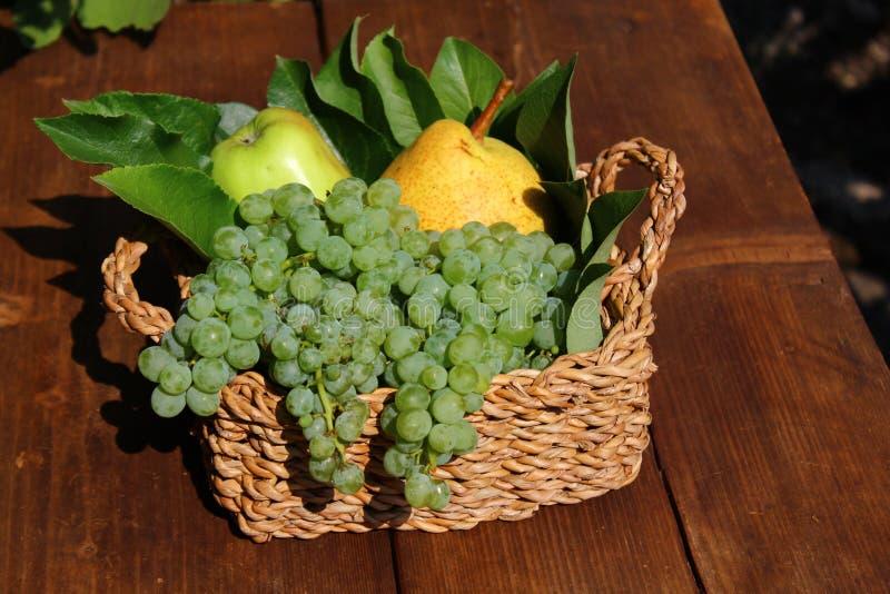 Mand met heerlijke vruchten stock fotografie