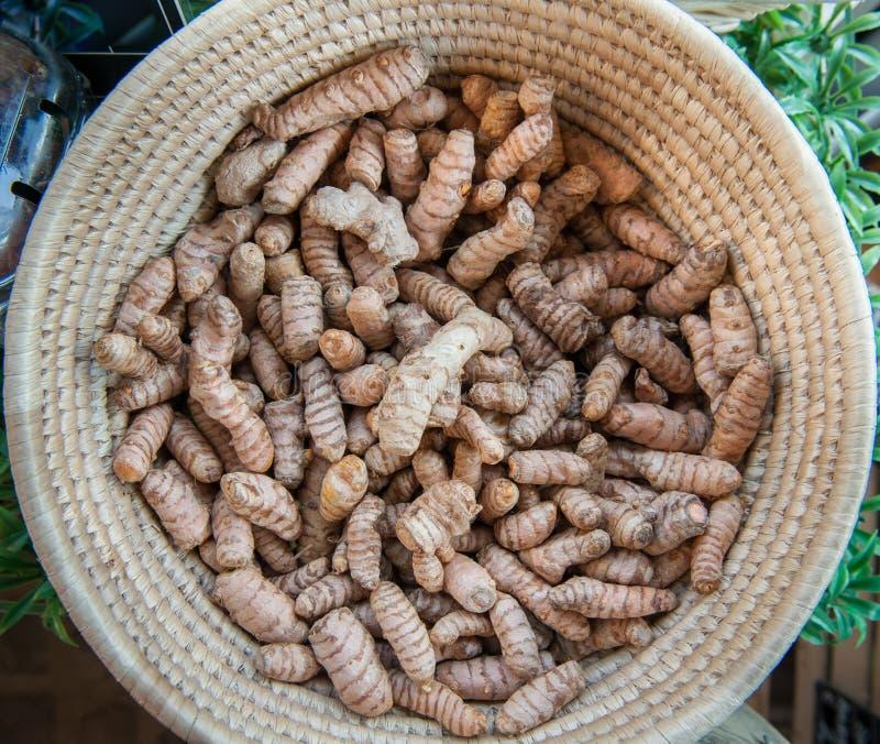 Mand met hoop van kurkumawortels royalty-vrije stock foto's