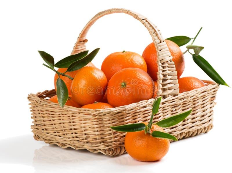 Mand met mandarijnen royalty-vrije stock fotografie