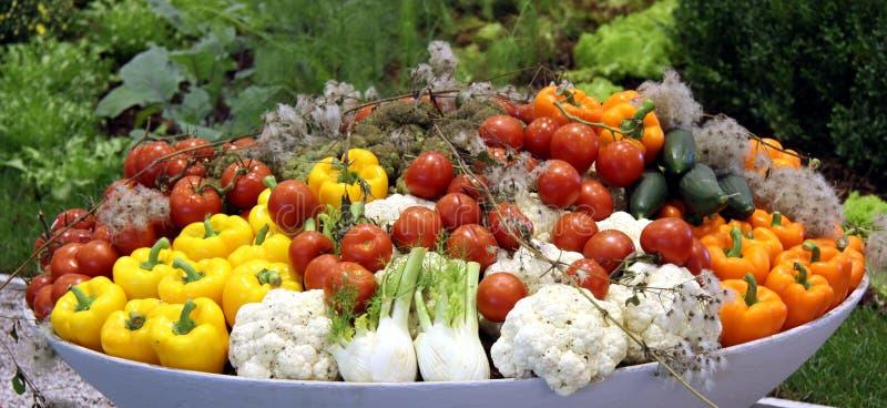 Mand met verse groente stock foto