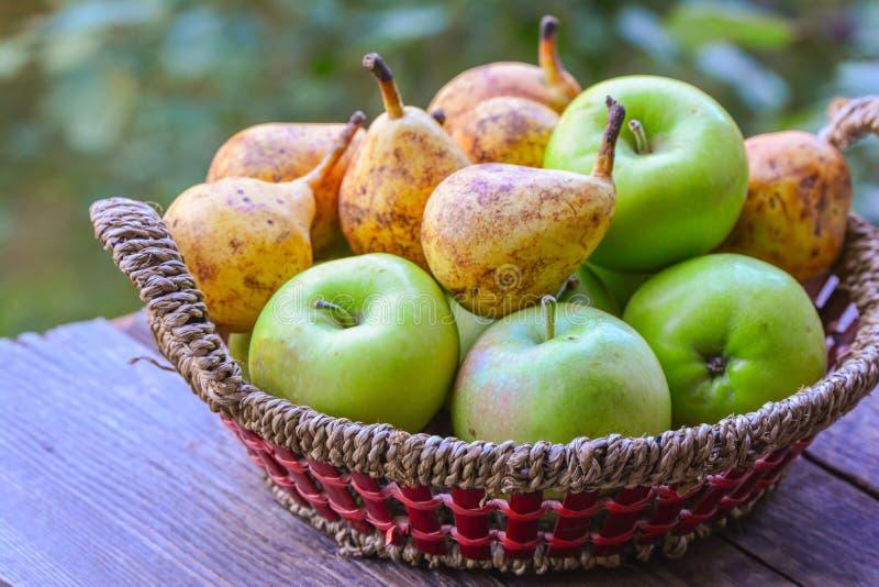 Mand met vruchten stock foto