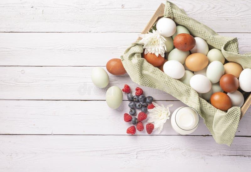 Mand van biologisch natuurlijk kooivrije eieren royalty-vrije stock foto