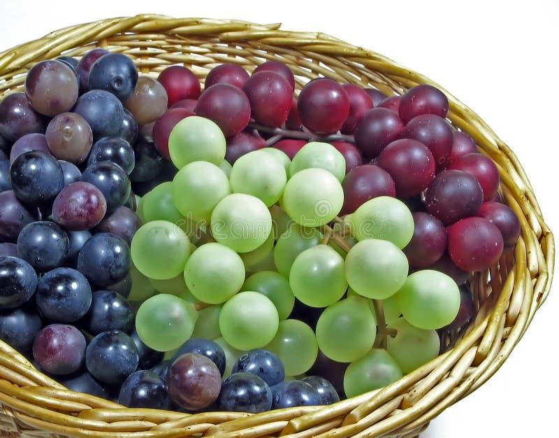 Mand van Druiven stock afbeeldingen