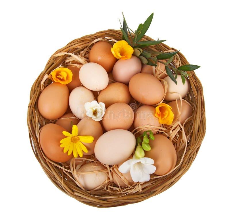 Download Mand van eieren stock afbeelding. Afbeelding bestaande uit verkoop - 29502837