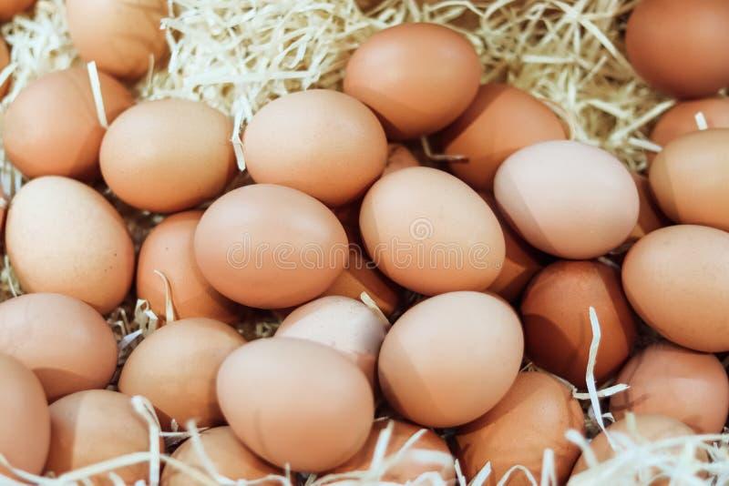 Mand van organische eieren in een landelijke landbouwersmarkt stock foto's