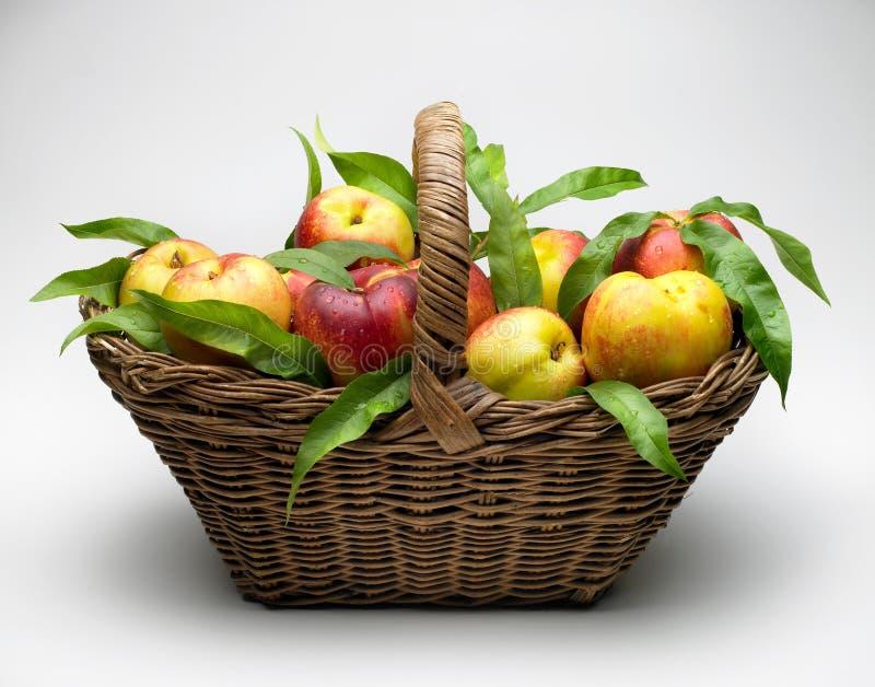 Mand van perziken stock foto