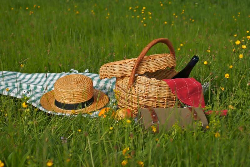 Mand van picknick stock foto